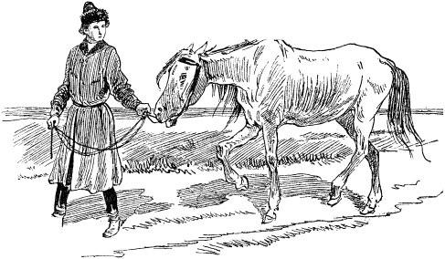 Волшебный конь (русская сказка)