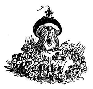 Война грибов (сказка)